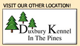 Visit our Other Location: Duxbury Kennel in the Pines
